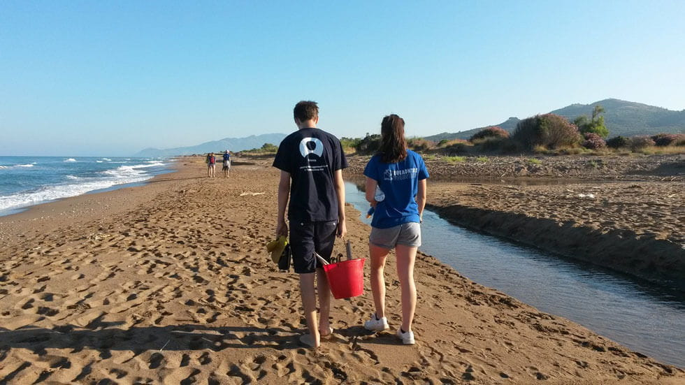 10 eco-volunteering holidays in the UK and Europe; sea turtles