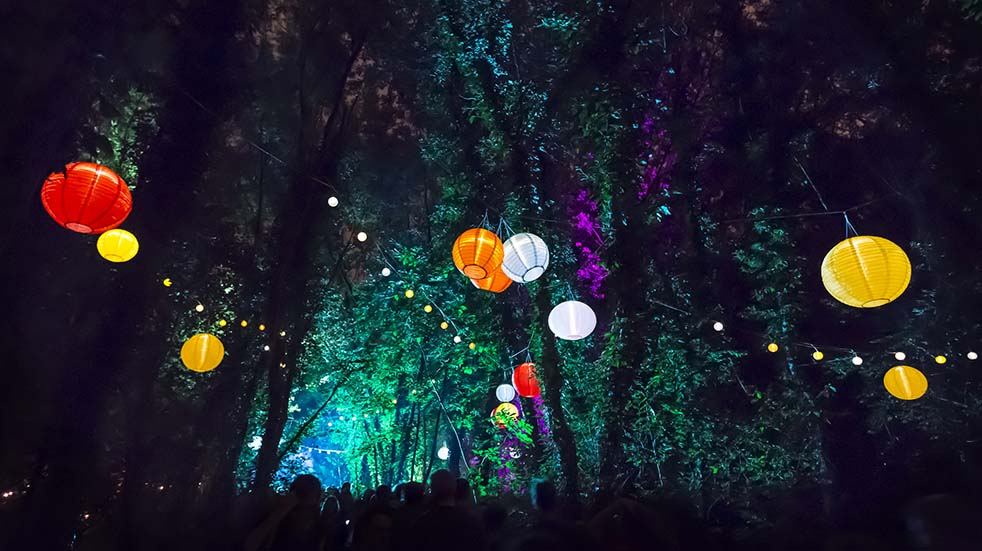10 easy ways to boost your mood this autumn forest illuminations