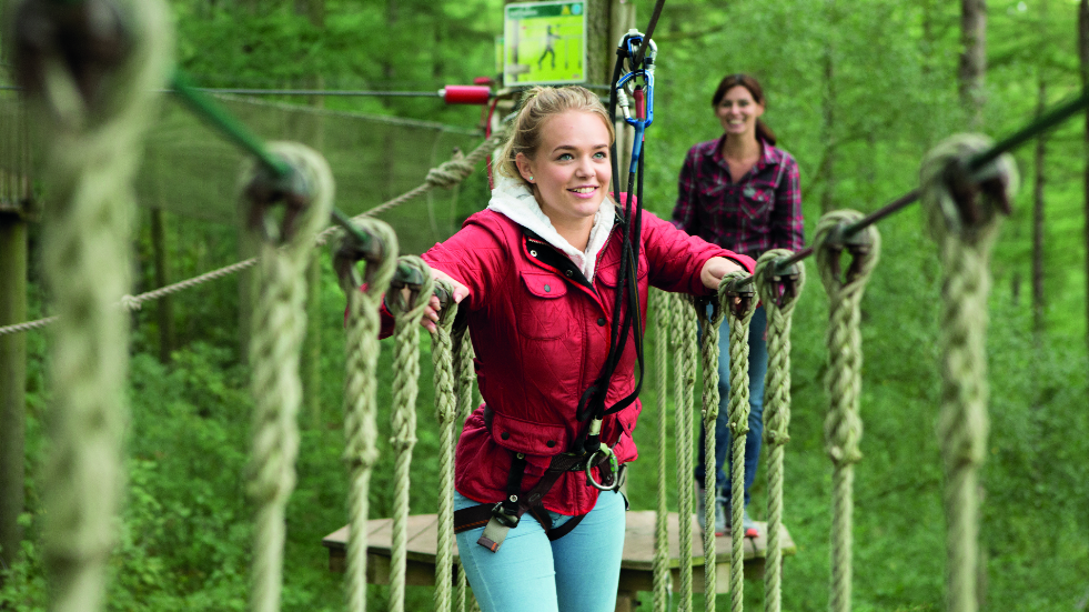 Moors Valley Country park Go Ape experience