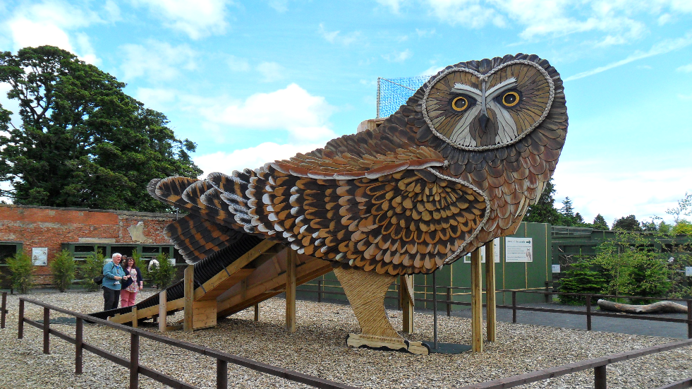 Edinburgh Slide Scottish Owl Centre