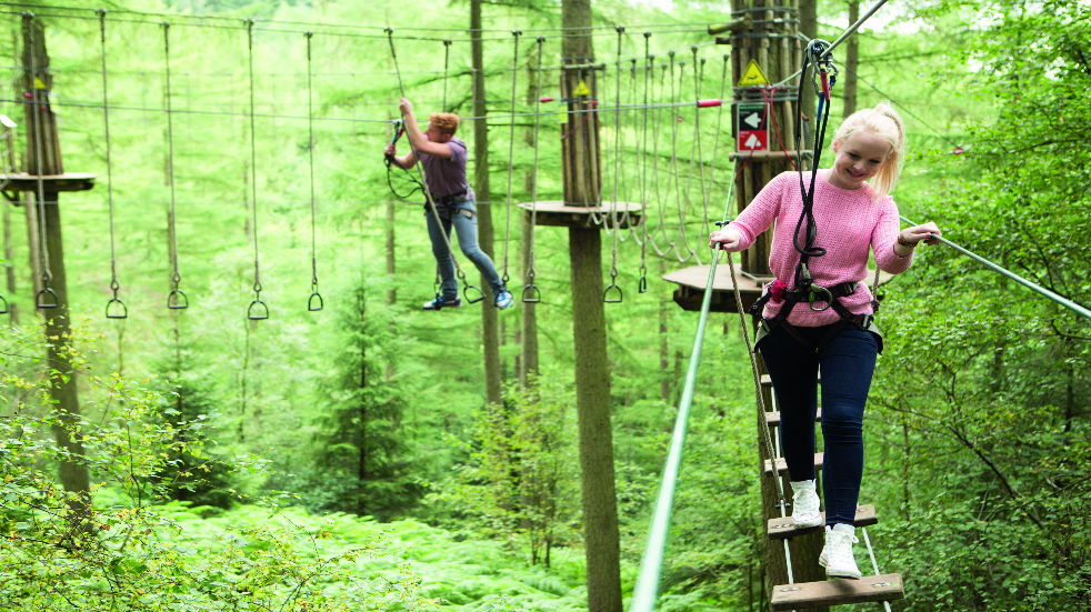 Gloucester Go Ape in the Forest of Dean
