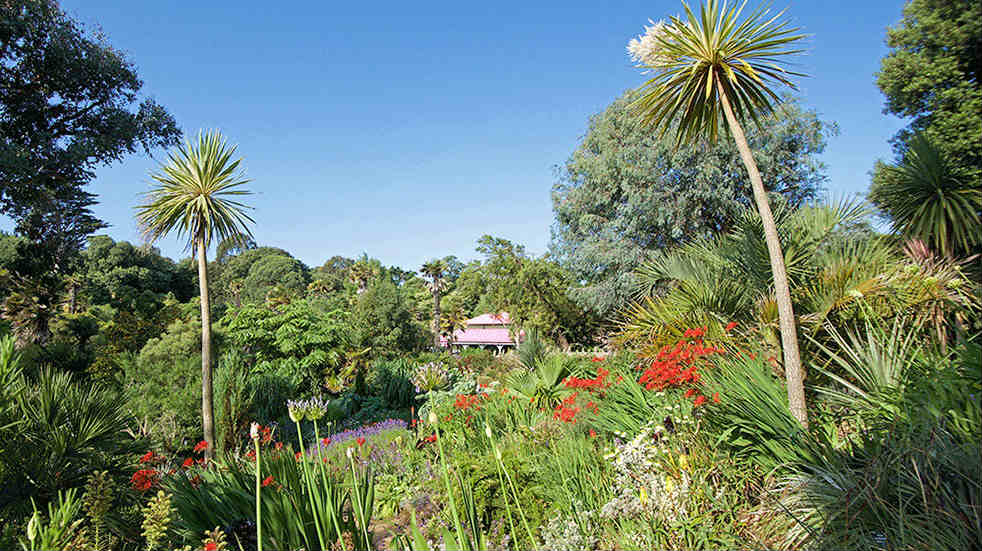Family days out near Weymouth - Abbotsbury Subtropical Gardens Mediterranean Bank