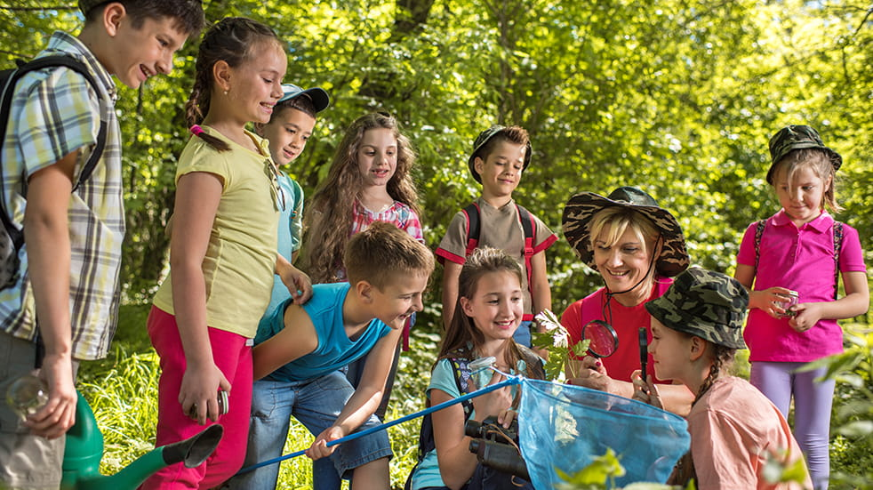 25 days out under £20: The Jungle Forest School Northern Ireland