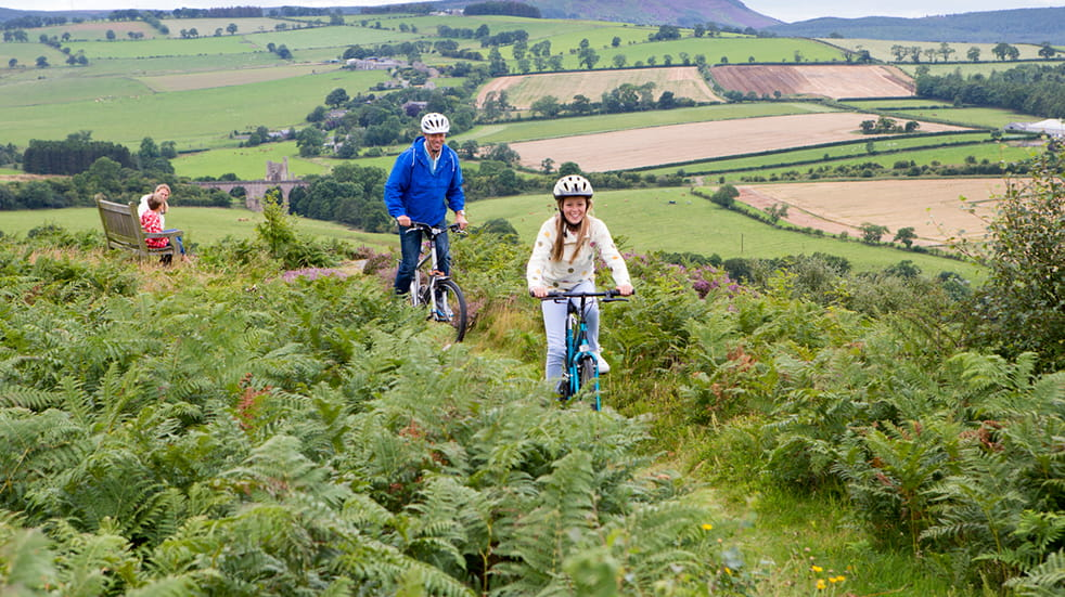 25 free things to do in June: Family cycling
