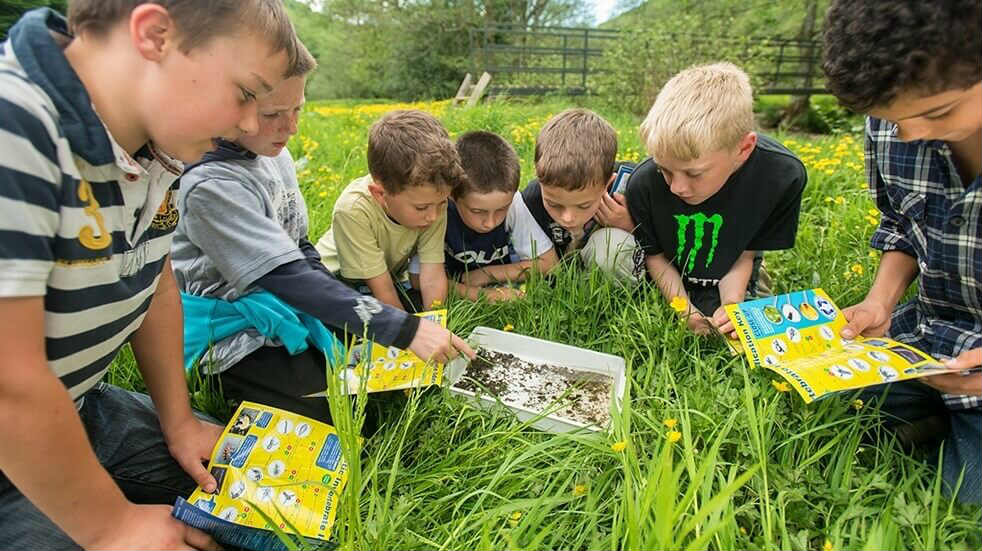 30 Days Wild: children studying wildlife