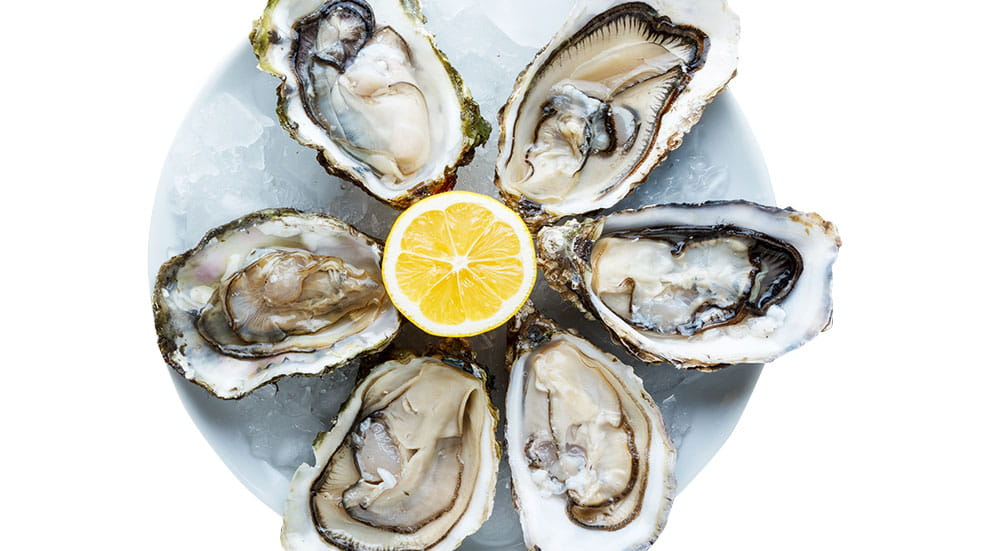 48 hours in Whitstable oysters