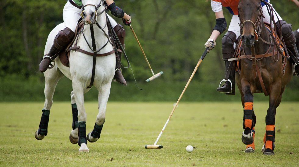 Polo at Cirencester