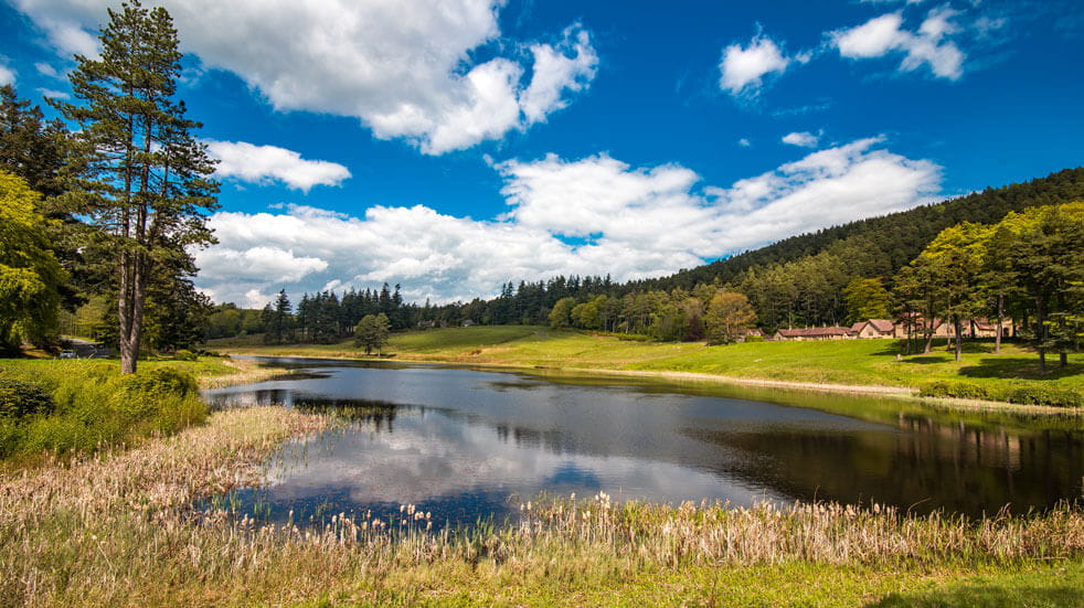 5 of the best autumnal walks in England Cragside