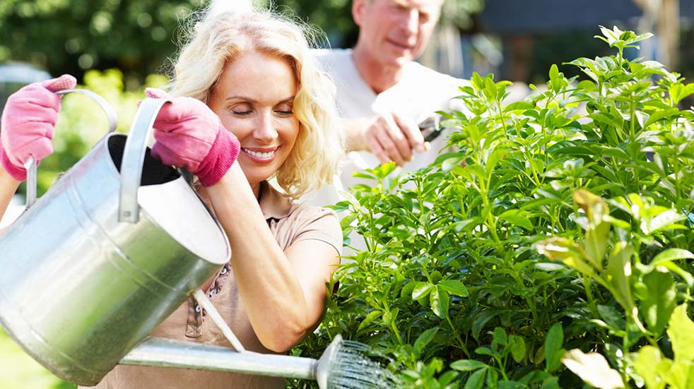 August bank holiday gardening tips couple gardening