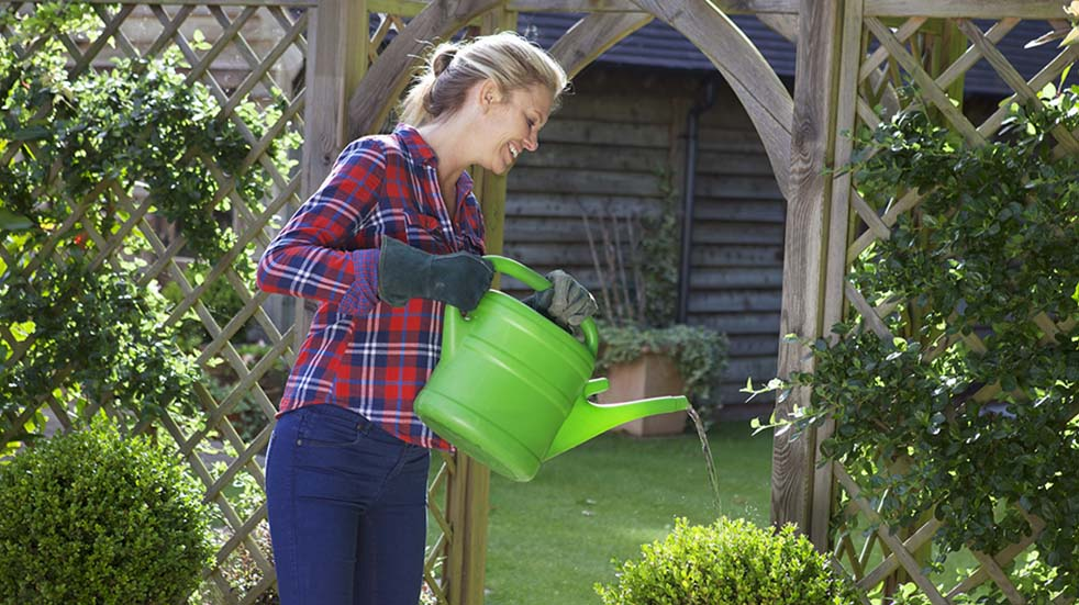 August bank holiday gardening tips woman watering shrub