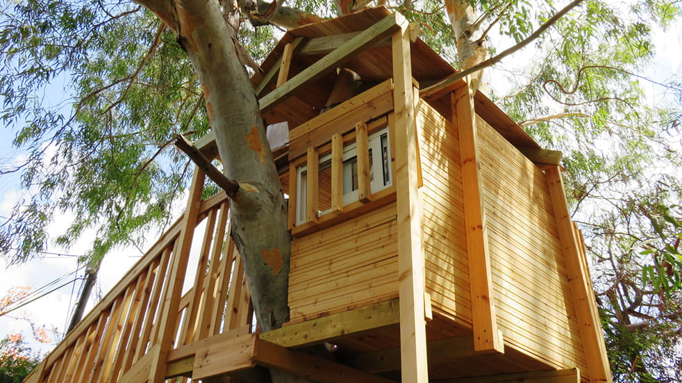 Beginner's guide to glamping - treehouses