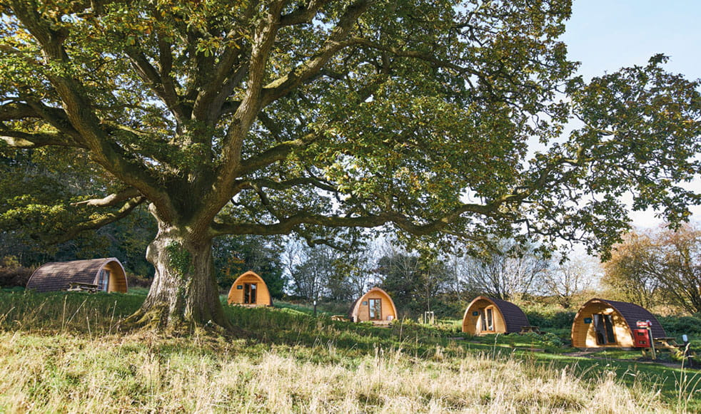 Whitemead Glamping Pods