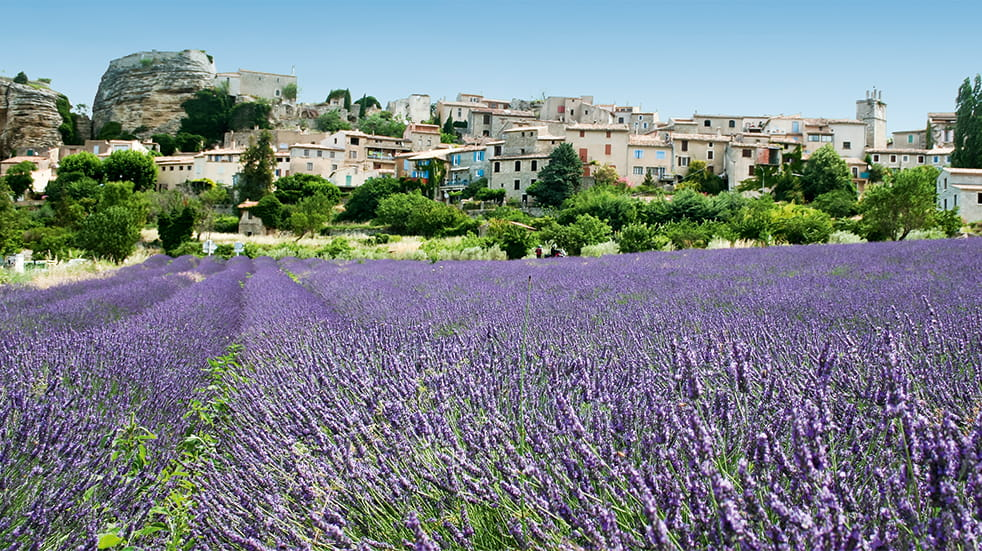 Best drives in France: Route Napoleon lavender in Provence
