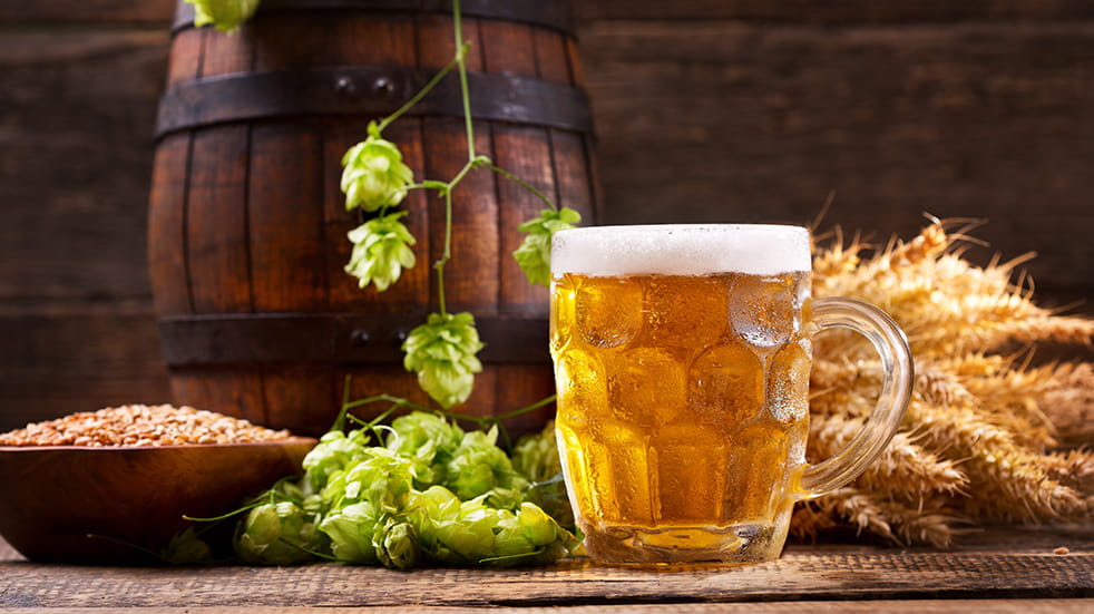Best free UK summer festivals: Faversham Hop Festival