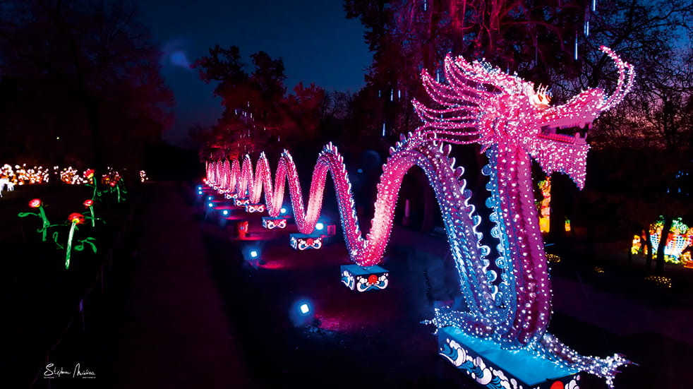 Best winter illuminations: Parc Foucaud, Gaillac