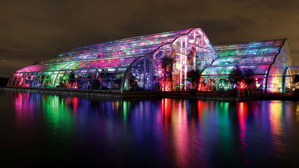 Best winter illuminations: RHS Garden Wisley's Glasshouse, © RHS/Luke Macgregor
