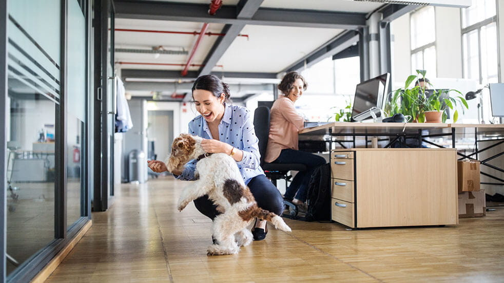 How to boost employee happiness: a happy workplace sees less turnover