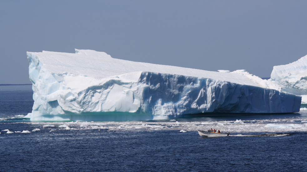 Where to see icebergs in canada