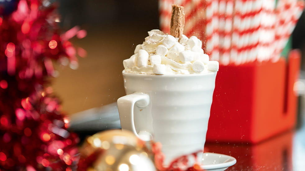 Christmas at Whitemead Forest Park: festive hot chocolate