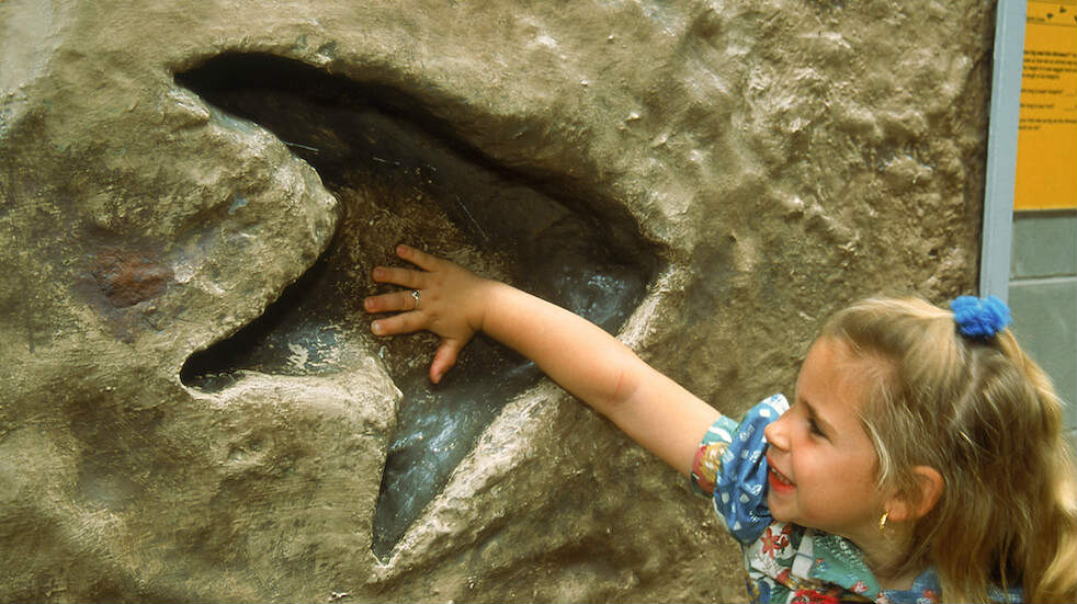 Free dinosaur days out: there's lots for kids to learn at free museums and dinosaur experiences
