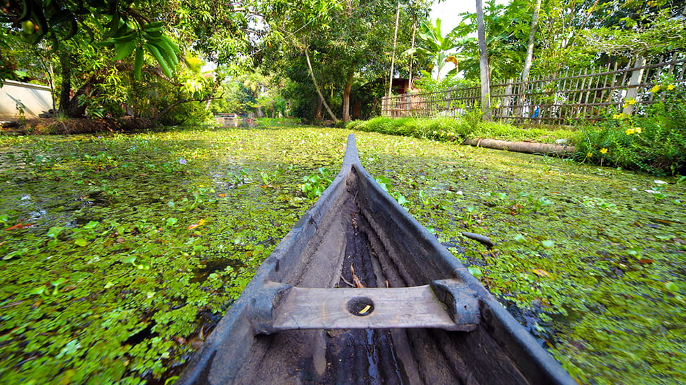 Expert travel guide to Kerala - canoe on the backwaters