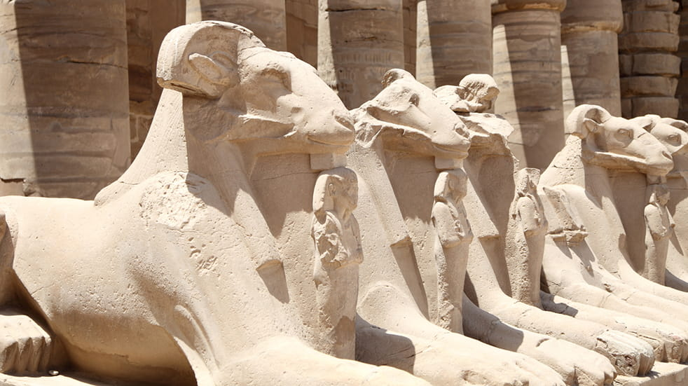 Expert guide to the Nile: the Luxor Museum
