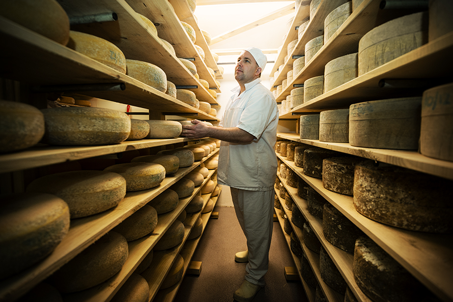 Man standing between two shelves of cheese