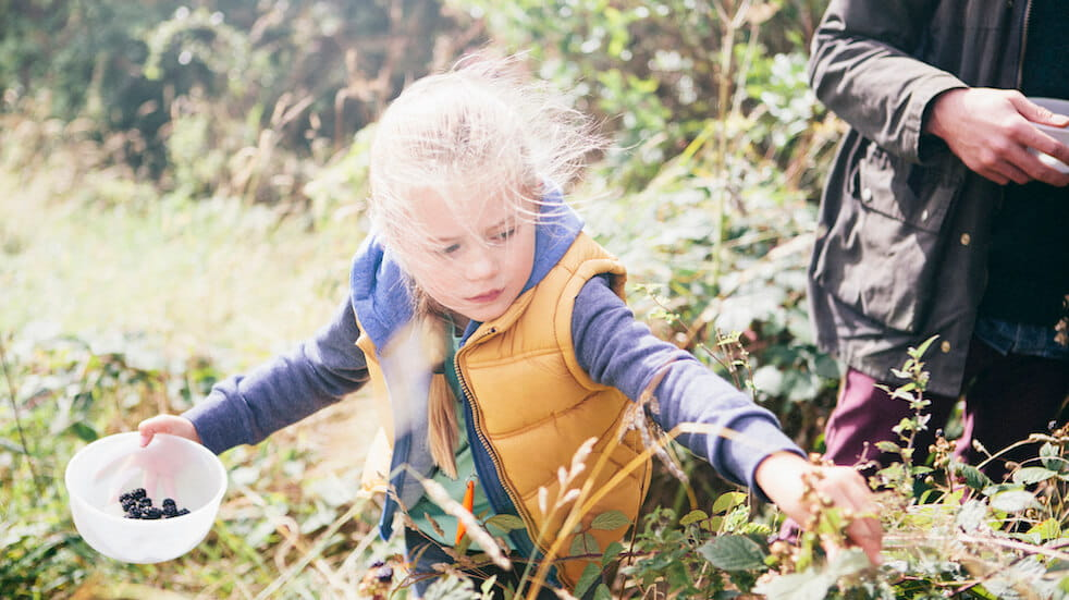Tips for forgaing in autumn: the whole family can enjoy picking wild berries and nuts