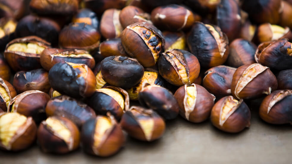 Tips for foraging in autumn: make roasted sweet chestnuts