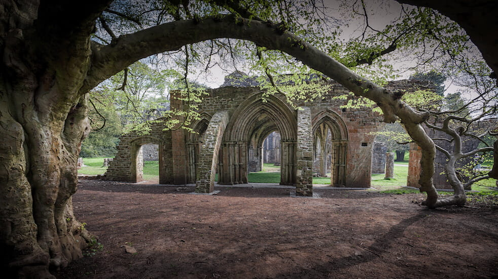Free things to do in South Wales: discover Margam Park