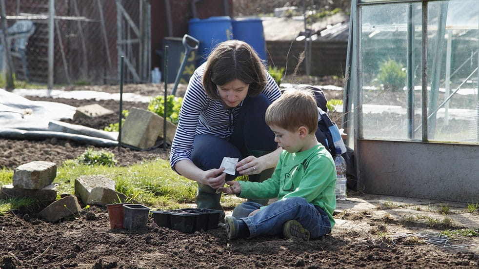 Get your garden ready for spring; planting seeds