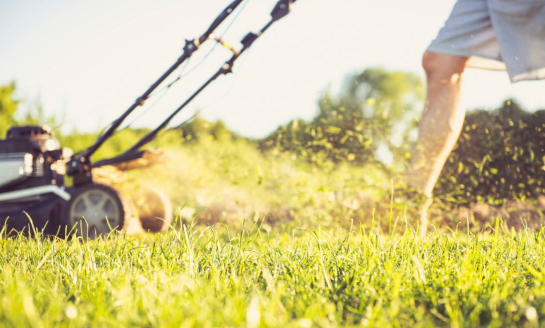 Get your garden ready for summer; lawn mowing
