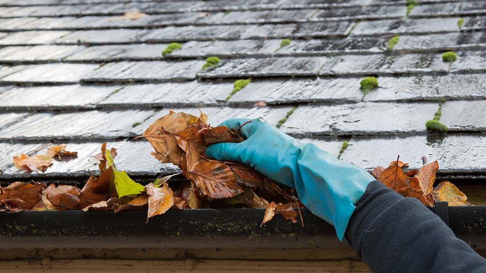 Autumn DIY leaves gutter pipe