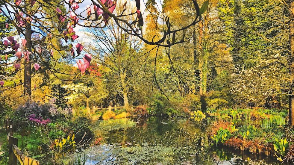 Ghyll Manor review: the Horsham hotel has lovely gardens