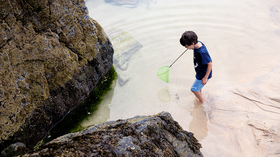 Haven holiday parks: rockpooling at Nature Rockz