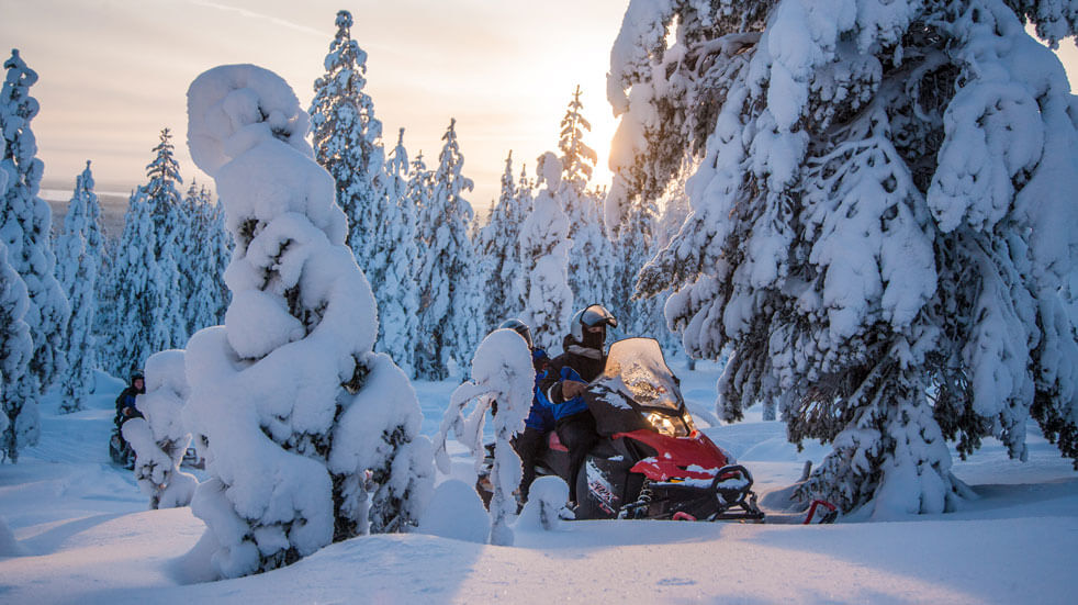 Lapland adventure riding on a snowmobile