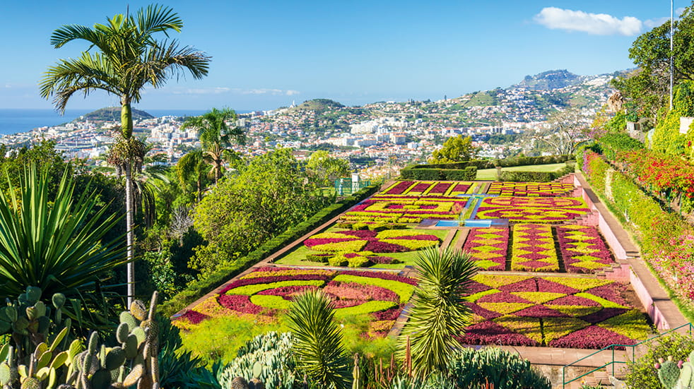 Madeira holiday guide: botanical gardens