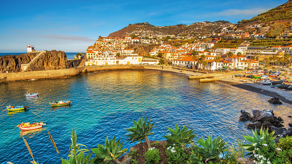 Madeira holiday guide: Camara de Lobos fishing village
