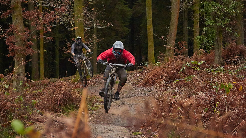 Mountain biking in Forest of Dean - cycling trail
