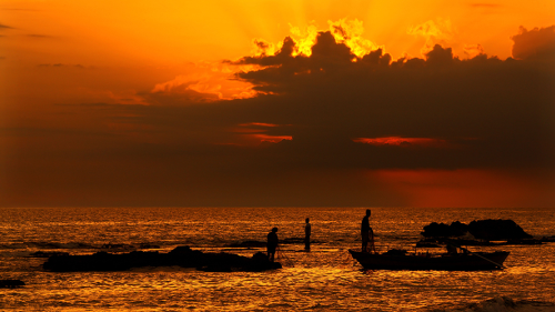 People standing in shallow waters at sunset