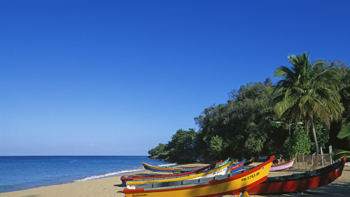 Boats on a beach at an exotic location