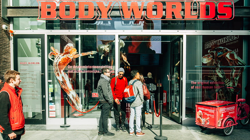 New things to see and do in London: Body Worlds exhibition