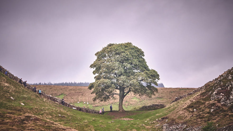 A great drive through Northumberland: visiting Northumberland Dark Sky Park