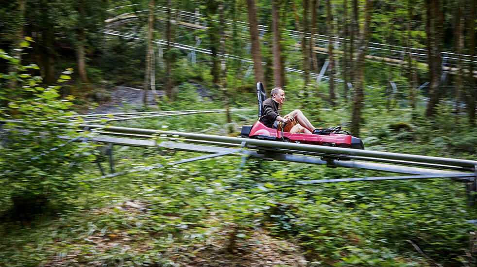 Snowdonia adrenaline activities day trip: Zip World Fforest Coaster Betws-y-Coed
