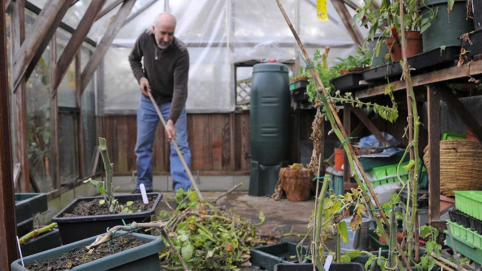 Spring gardening tips; cleaning greenhouse