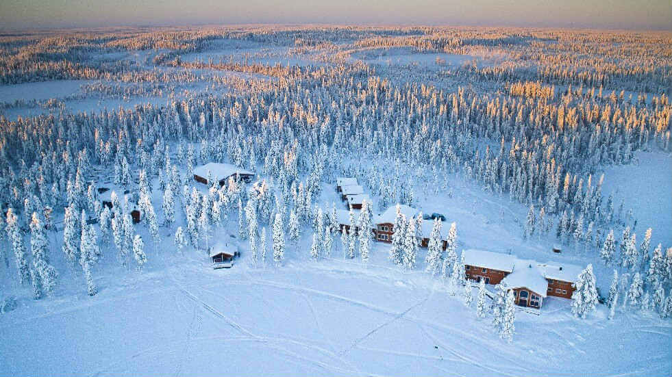 Pine tree lodges in Lapland covered in snow