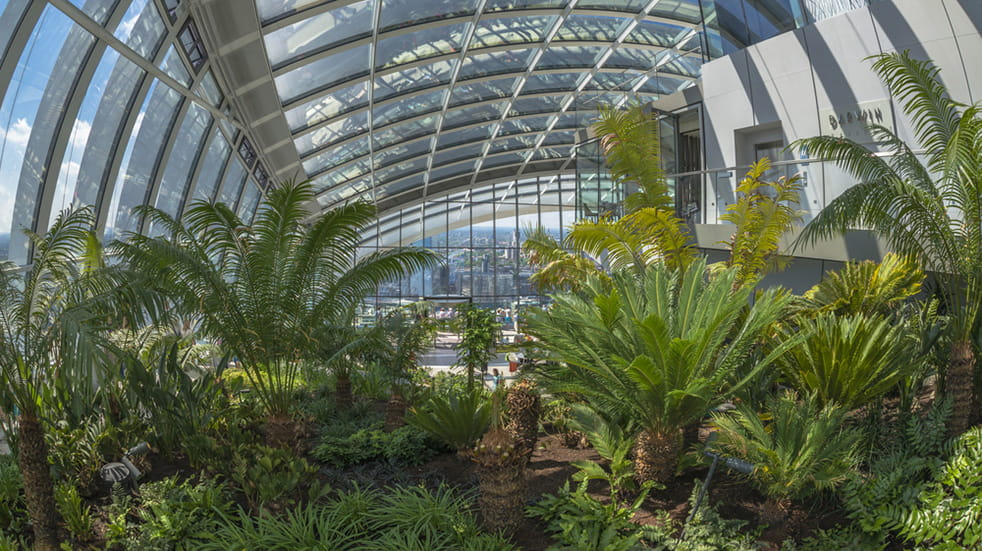View of London's Sky Garden