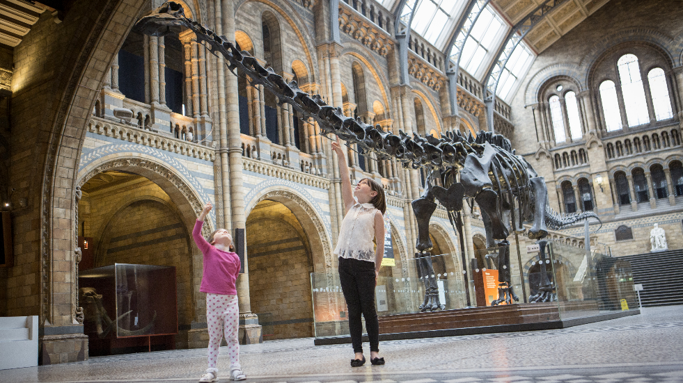 UK Tour of Dippy the Dinosaur