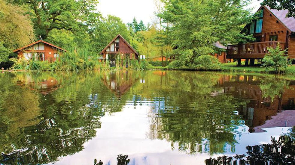 Whitemead Forest Park celebrates its 50th anniversary; log cabins