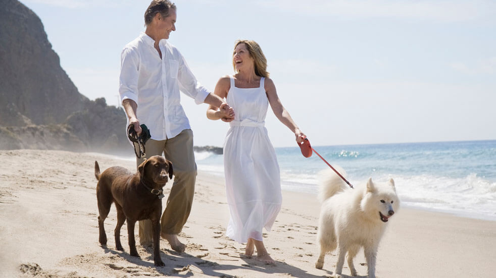 Why having pets at home could change your life; man and woman with dogs